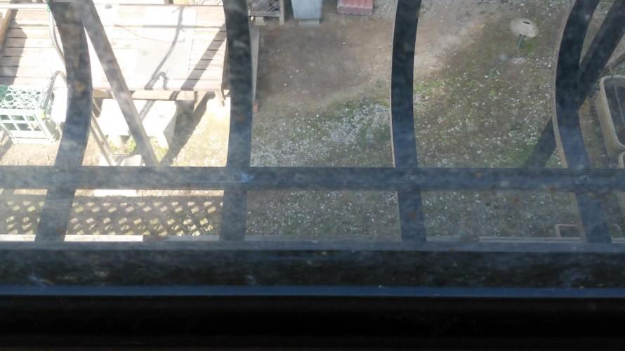 ガラスのカビ
