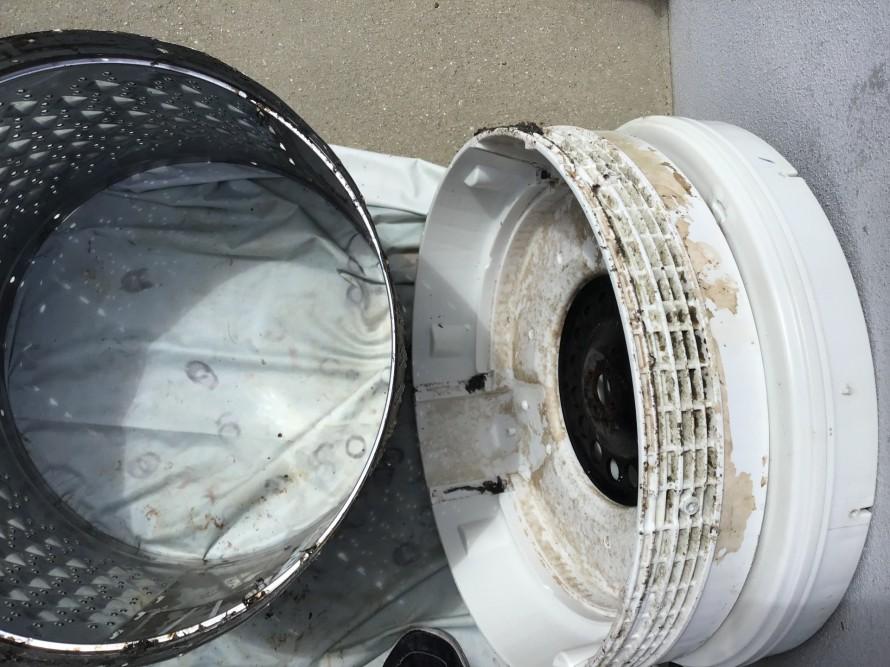 東芝洗濯機分解クリーニング