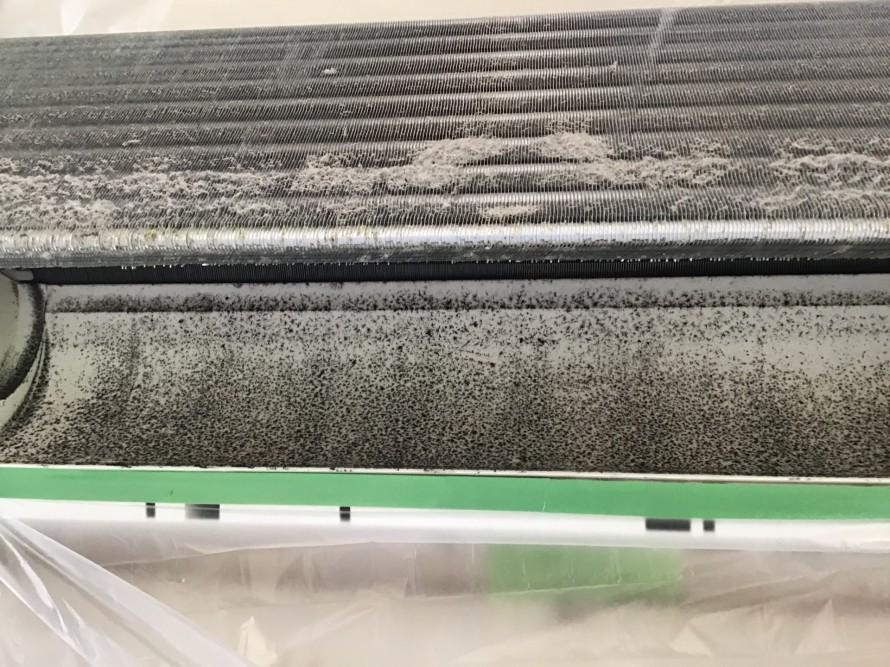 シャープのフィルターおそうじ機能付きエアコン