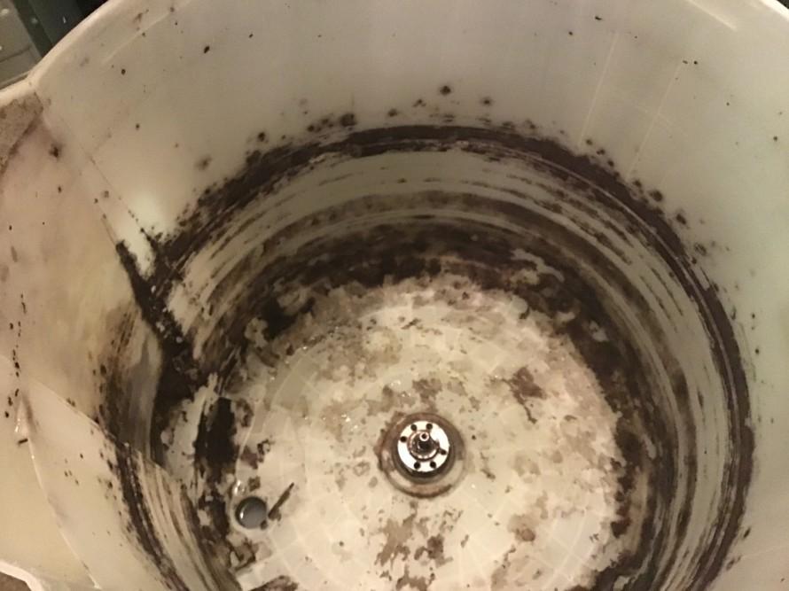 東芝洗濯機クリーニング