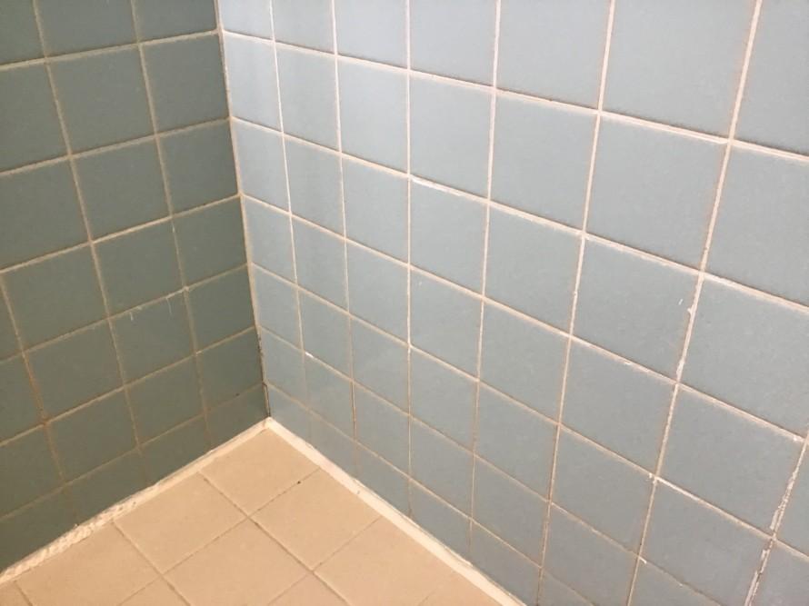 浴室掃除カビ