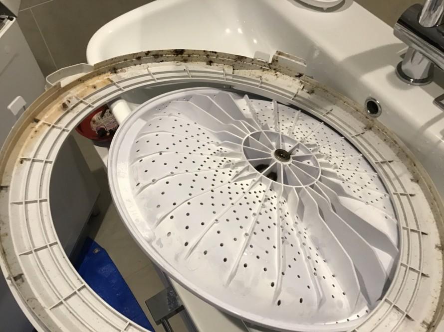 洗濯機の分解クリーニング