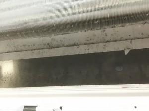 日立お掃除エアコンクリーニング